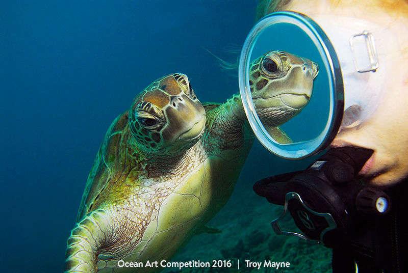 content-1484133764-ocean2