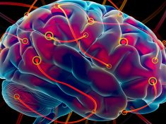 brain-entropy-1200x675